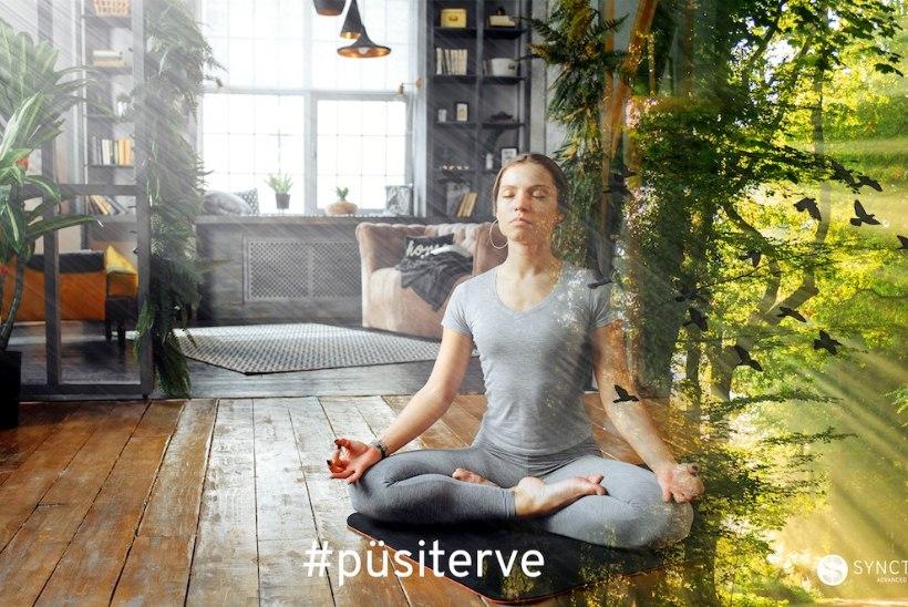 PÜSI TERVE: kodumaine lõõgastusrakendus aitab vaimset tervist hoida