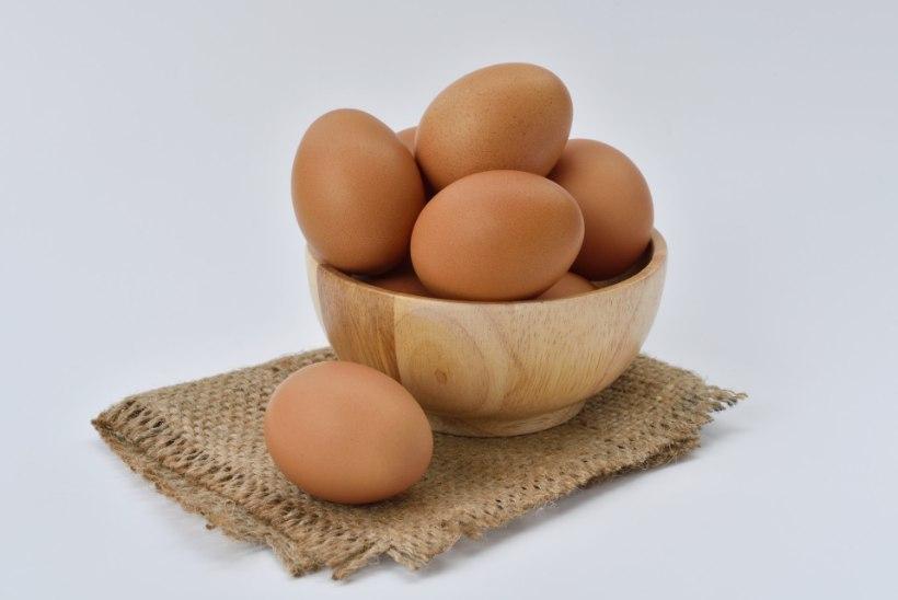 MUNAUPUTUS? Viissoovitust, kuidas pärast lihavõttepühi mune nutikalt roogadesse sobitada