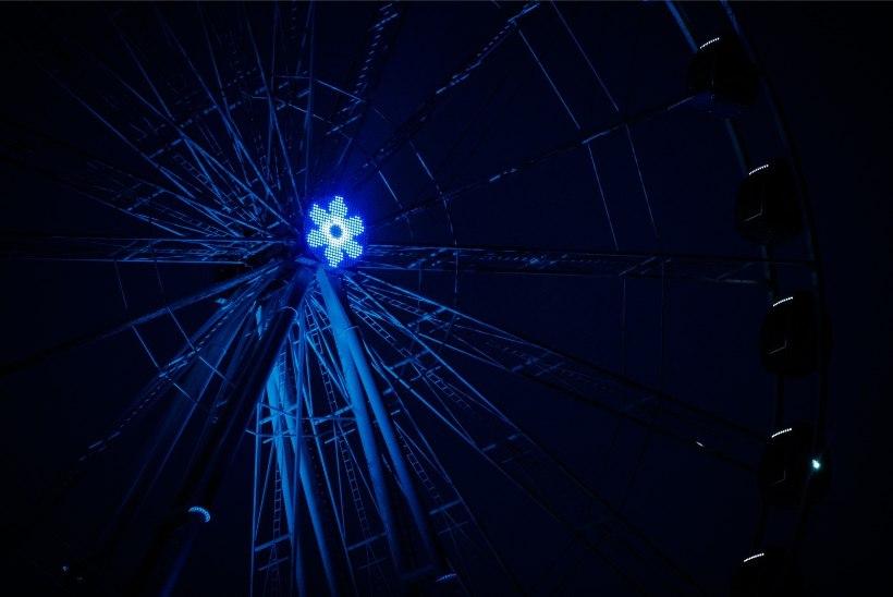 GALERII   T1 vaaterattas värvus veteranipäeva tähistamiseks sinimustvalgeks
