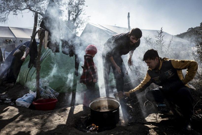 Tuvastamata ründaja avas Kreeka põgenikelaagri pihta tule, viga sai kaks migranti