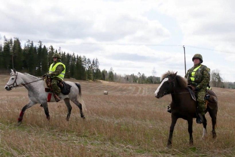 TV3 VIDEO   Uuenduslik lähenemine: Eesti lõunapiiri valvab ratsapatrull