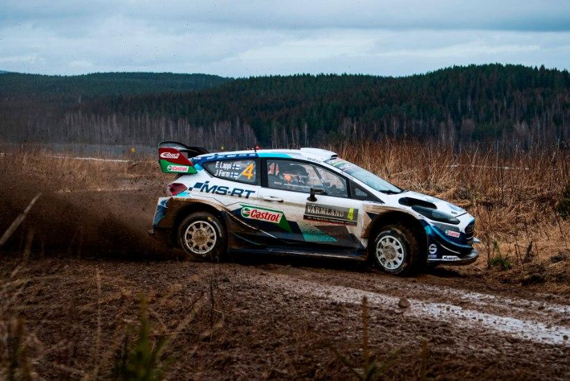 Mõtteharjutus WRC tiimijuhtidele: kui saaksite teisest tiimist ühe sõitja napsata, siis kelle?