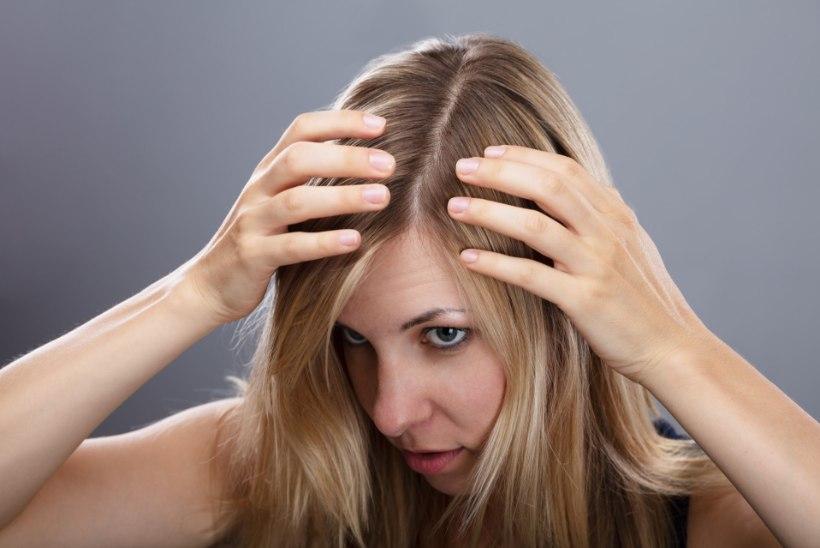 Lugejakiri   Inetu pardipoeg: puhmas kulmud ja hallisegused juuksed