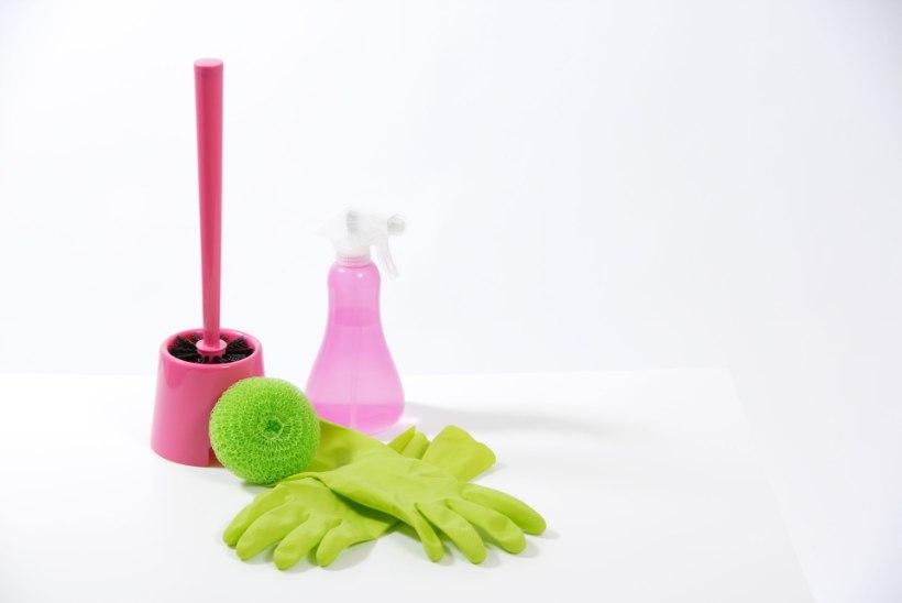 TIIU TESTIB | Ärge ostke esimest ettejuhtuvat WC-harja!