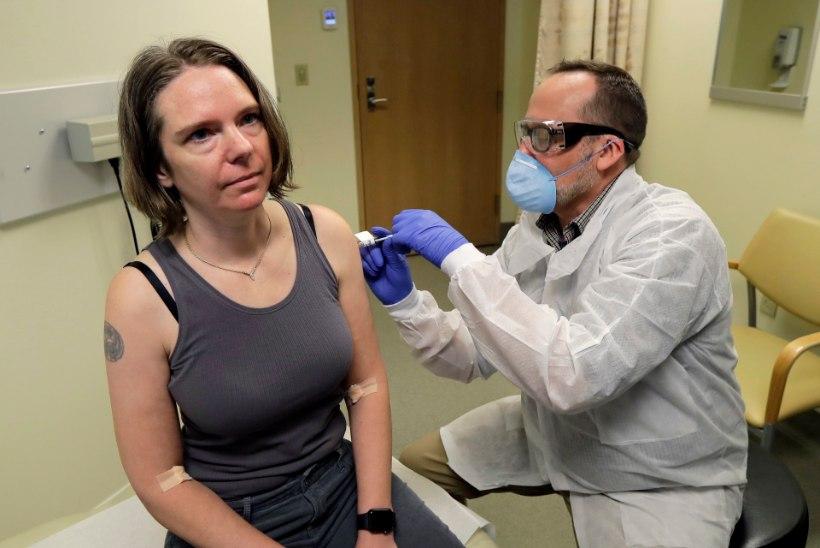 Covid-19: palehigis otsingud vaktsiini leidmiseks