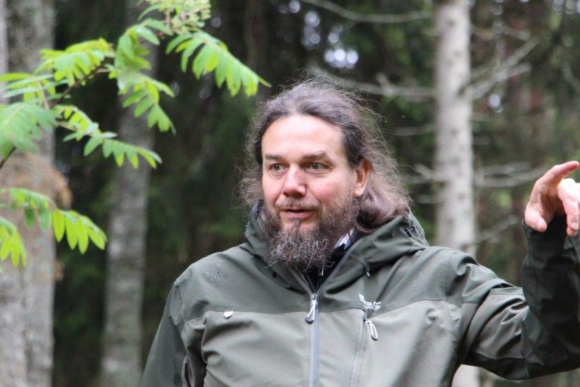"""Ahto Kaasik: Metshaldjas võib ilmuda kellena iganes: põdra, kuuse, metsise või naisena."""""""