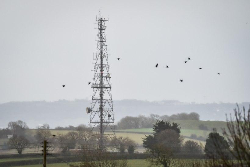 Hullunud vandenõuteoreetikud põletavad Suurbritannias 5G mobiilimaste