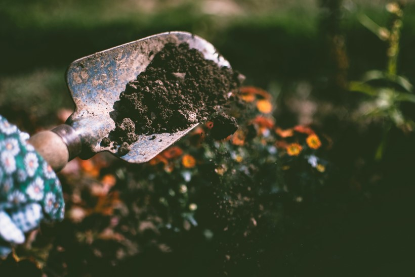 Kuidas õigesti käru lükata? Aga maad kaevata? Kasulikke nippe, et aiatööd konti ei murraks