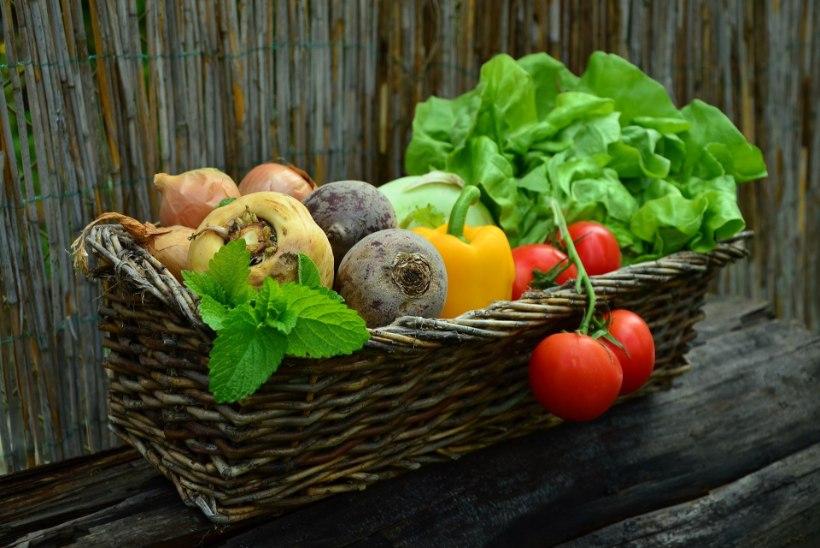 KRIISIAEG: kuidas toidulaud tervislik hoida