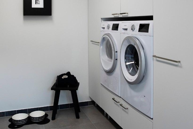 ASENDAMATU ABILINE: kuidas valida koju pesukuivatit?