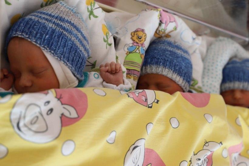 Palju õnne perele! Tallinnas sündisid aasta esimesed kolmikud