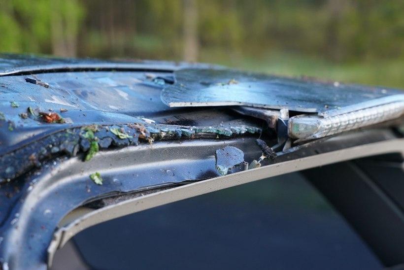 FOTOD | Jõgevamaal paiskus purjus noormees autoga teelt välja ja sai vigastusi