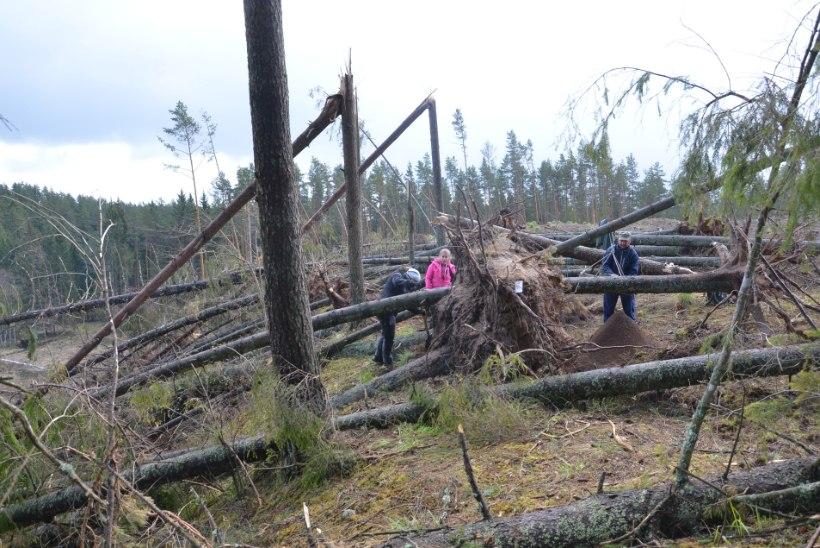 Lageraiega lõhuti Rosma linnuse väravakoht, järgnenud  tormimurruga sai kahjustada iidne kultuurkiht