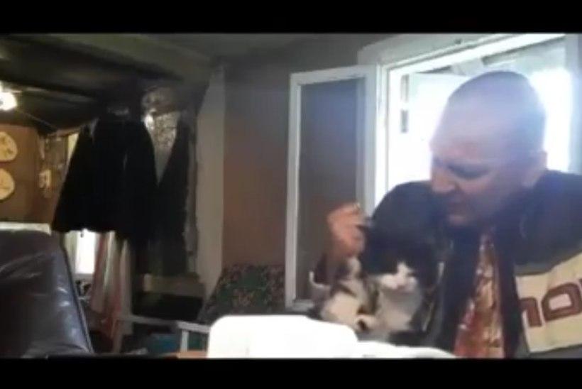 Mees kohtles jõhkralt kassi ja postitas video sotsiaalmeediasse