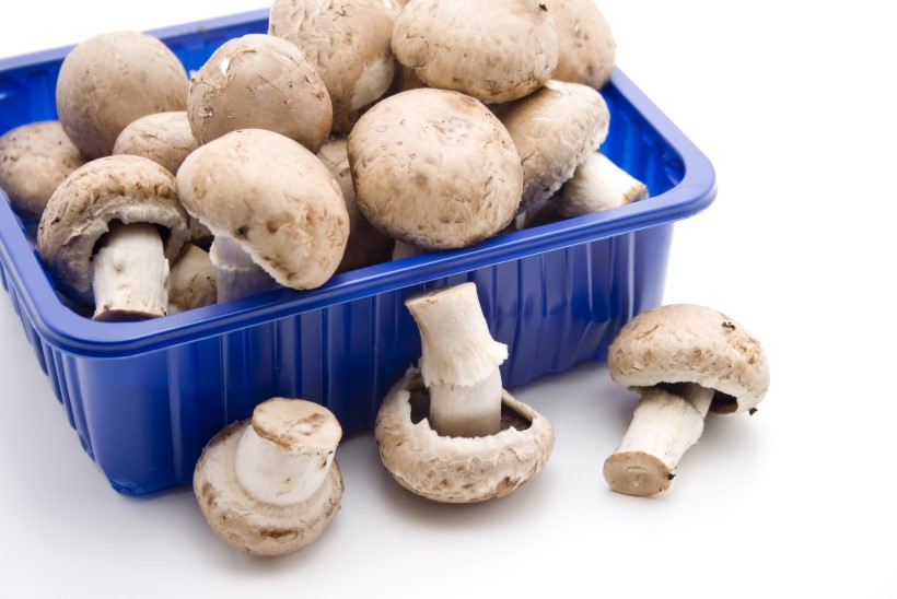 PANE TÄHELE | Kuidas valida poes seeni ja hoida neid kodus külmikus kauem värskena
