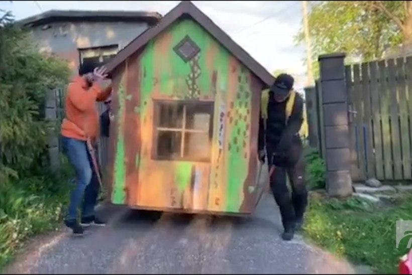 VIDEO | Lea Dali Lion on õnnelik, sest sai maja müüdud