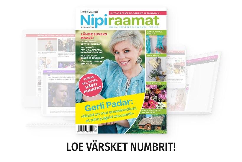 JUUNIKUU NIPIRAAMAT | Loe nüüd ajakirja ka veebis!