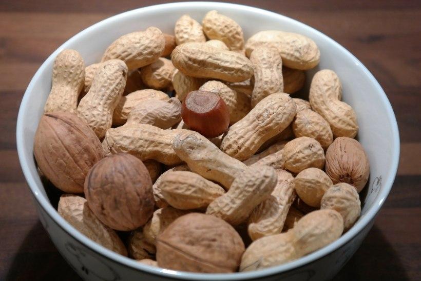Ei olegi pähklid? Mida võiksid teada maapähklist ehk arahhisest?