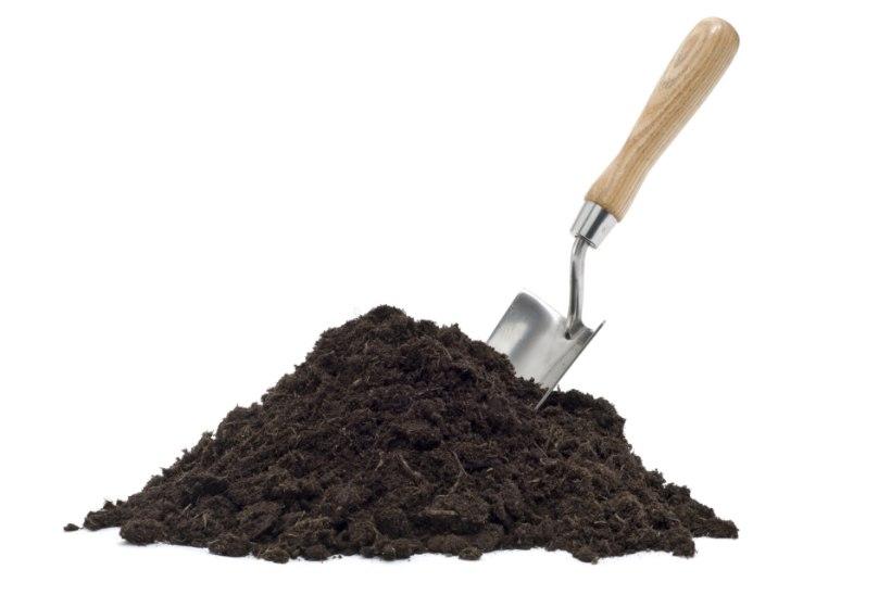 Ettevaatust, kompost! Väetiste ületarvitamine mürgitab aedvilju