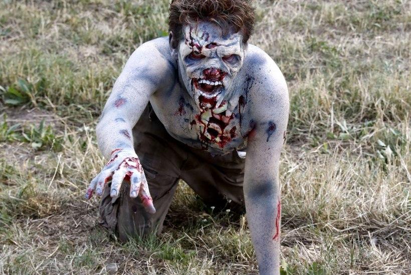 Rootsi piirivalve peatas relvastatud zombikütid