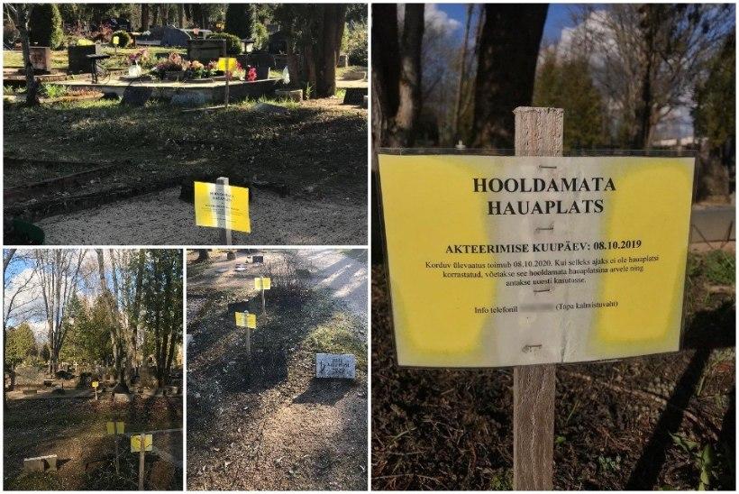 """Tapa kalmistuvaht saab ähvardusi: """"Kui sa veel kord sinna kollase lipiku paned, läheb sul s*****i!"""""""