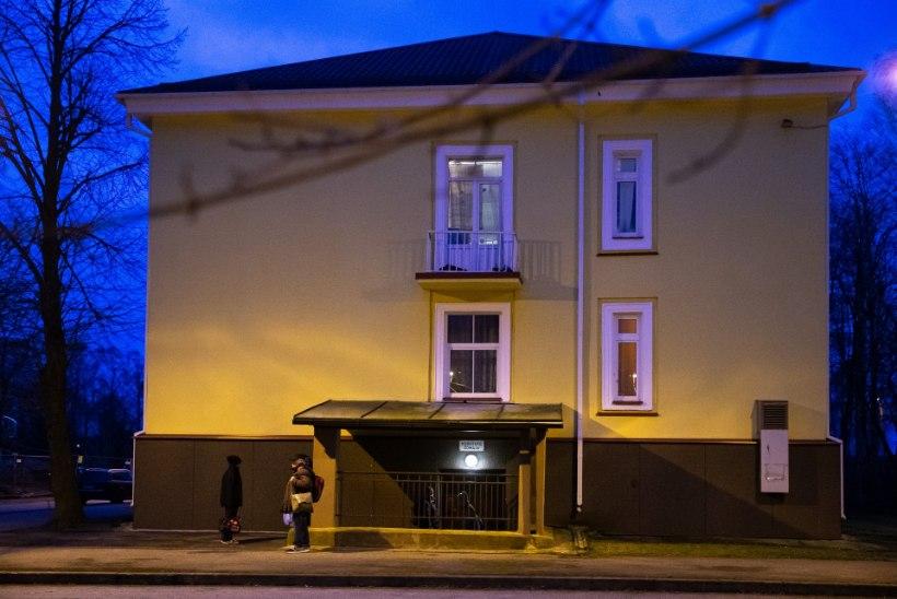 Tallinn palus karantiinis kodutute ohjeldamiseks abi kaitseliidult
