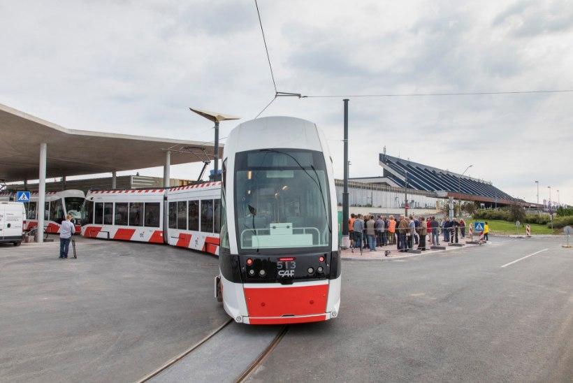 KES KEDA? Kas rutem valmib trammitee sadamasse või laheneb linnahalli saaga?