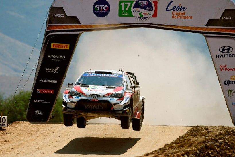 VIDEO | WRC sarja tulevane valitseja sai lõpuks taas WRC masinat testida ja lausa lendas rajal