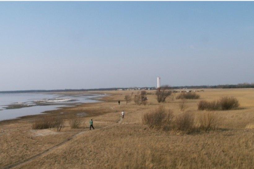 MUST VESI VÕI NIHKES INFO? Eesti kolmes supelrannas ei soovitata ujuda