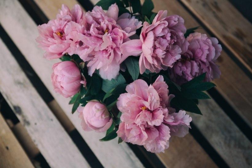 Lillede keel: igal õiel ja värvil on oma tähendus! Millist valida koolilõpetajale?