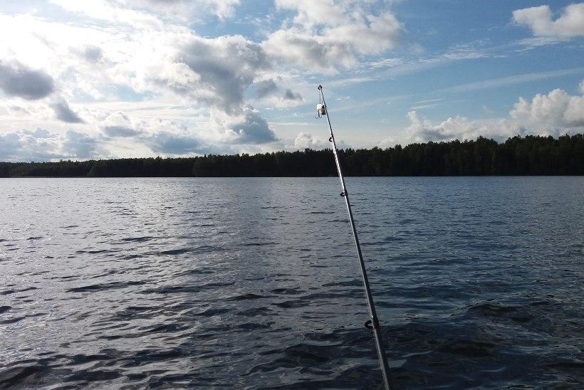 Suvel toimub Käsmus noorte kalalaager