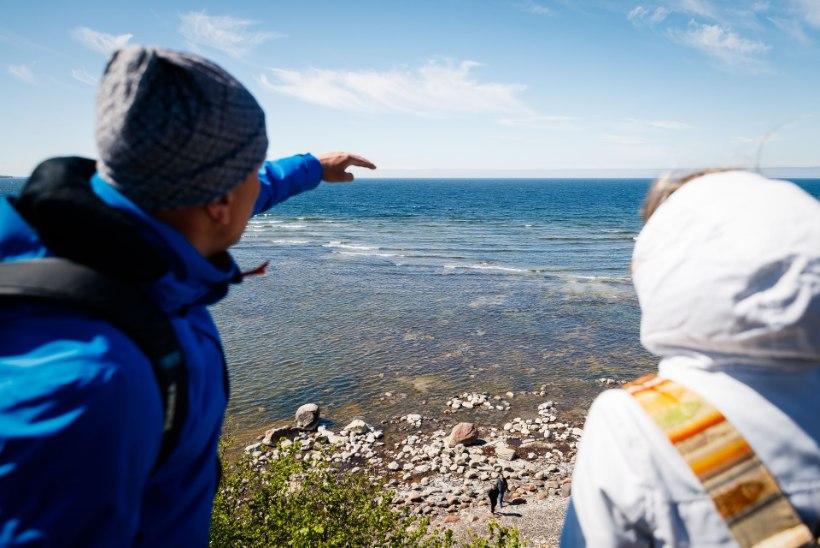 MÄLUMÄNG | Vaata, kui palju tead Eesti looduskaitsest!