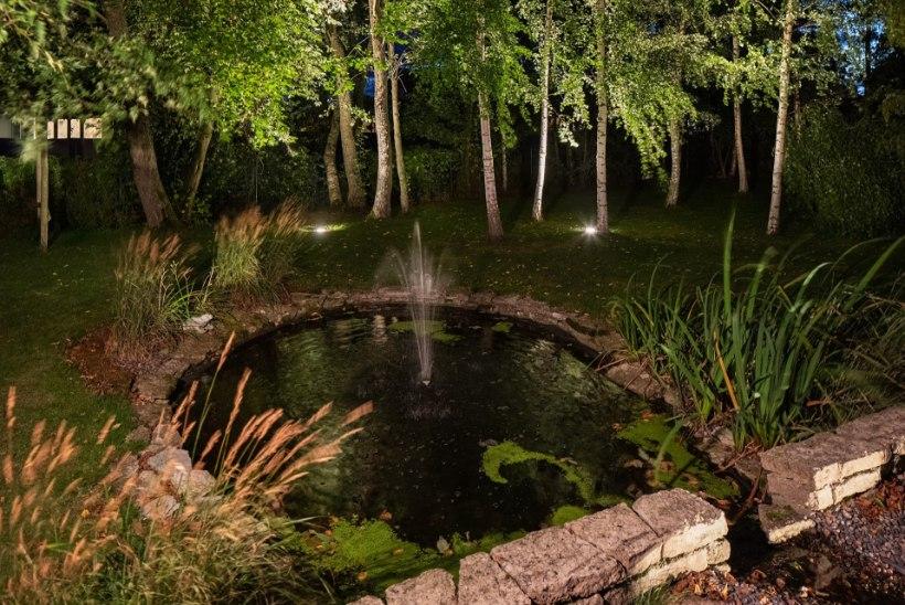 Välisvalgus annab aiale uue ilme! Kasulikud soovitused, kuidas valgusteid valida