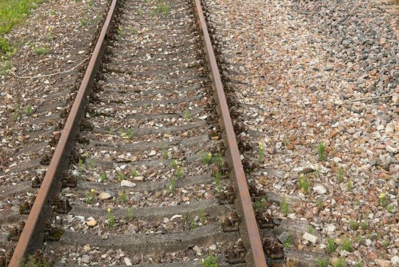 Tõnis Erilaiu lehesaba   Kuidas Eestis rong kuritahtlikult kraavi lasti