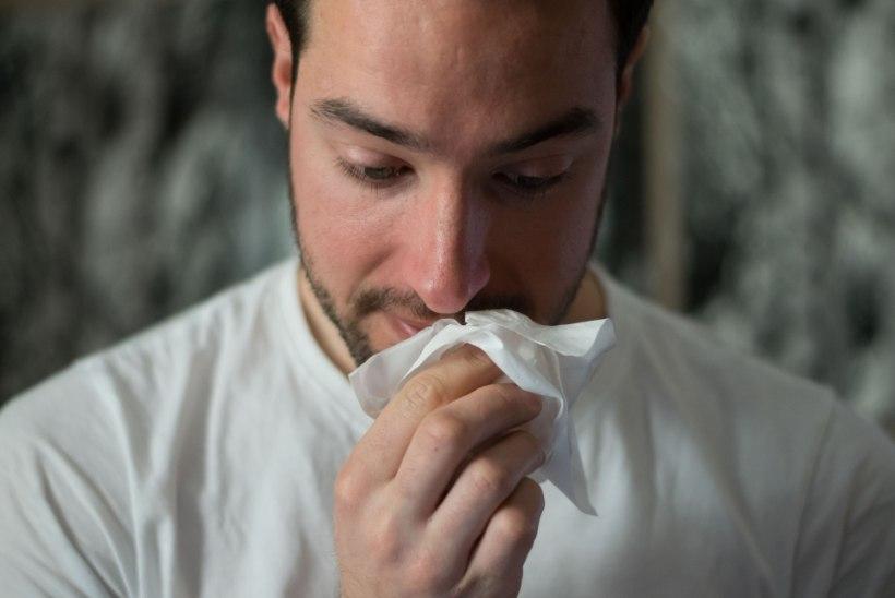 5 põhjust, miks nina on vesine