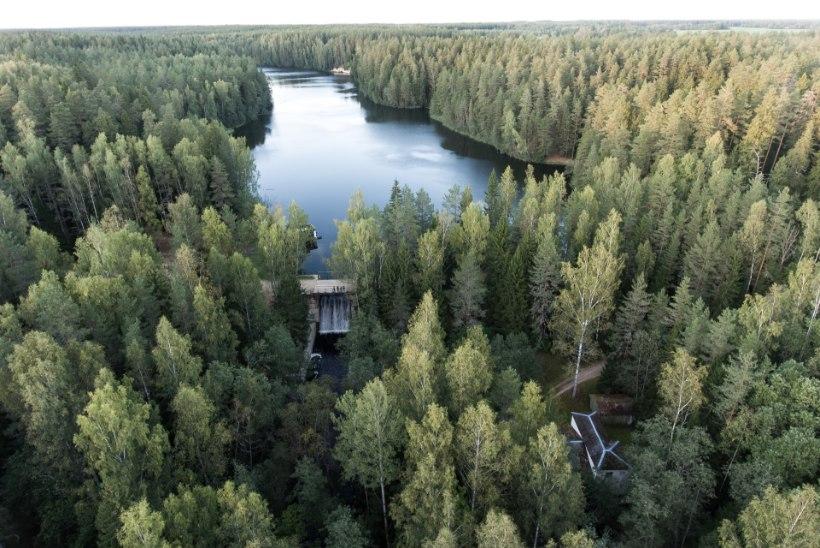 """Tarmo Soomere kliimamuutustest: """"Eestil on vedanud, aga peame vaatama maailma laiemalt. Igaühe panus loeb."""""""