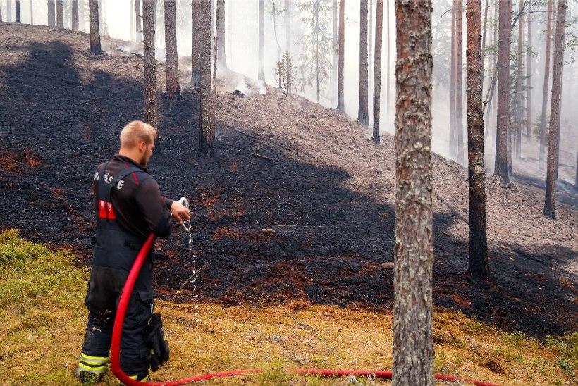 Päästeamet hoiatab: isegi väike eksimus lahtise tule kasutamisel võib kaasa tuua rängad tagajärjed