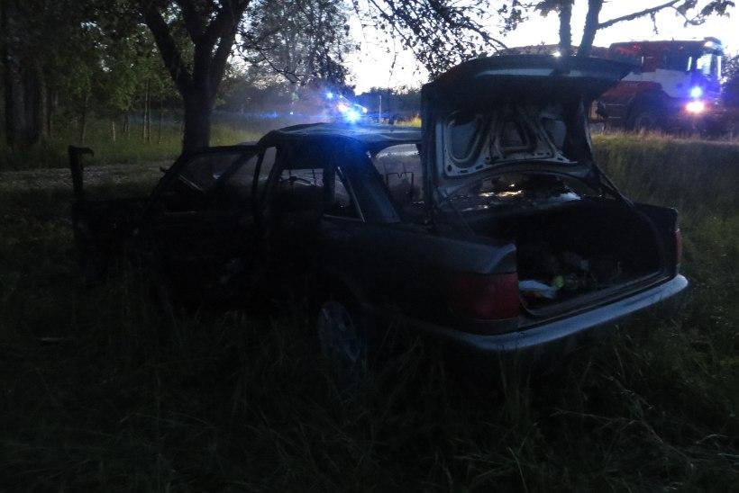 Põdrale otsa sõitnud auto juht haiglas, auto põlenud