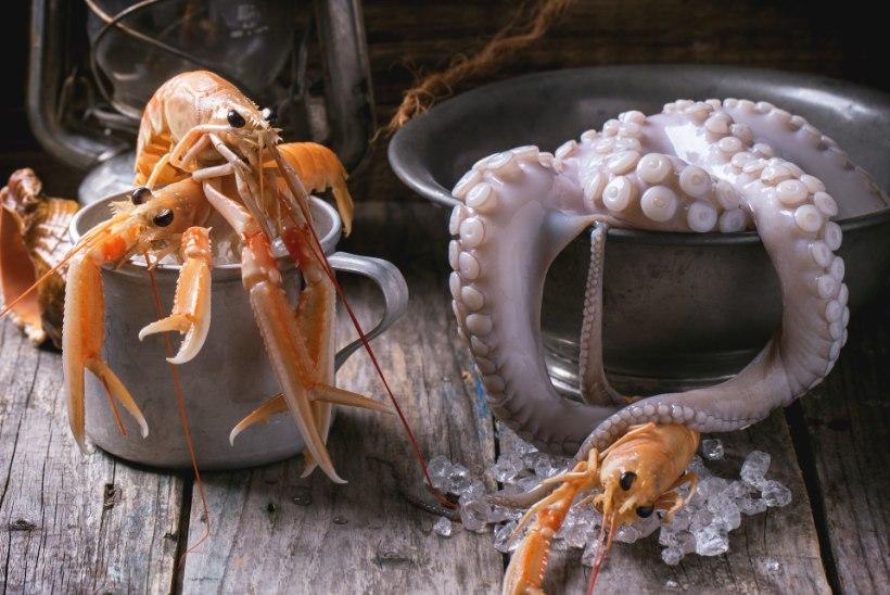 Miks eelistada oma toidulaual mereande?