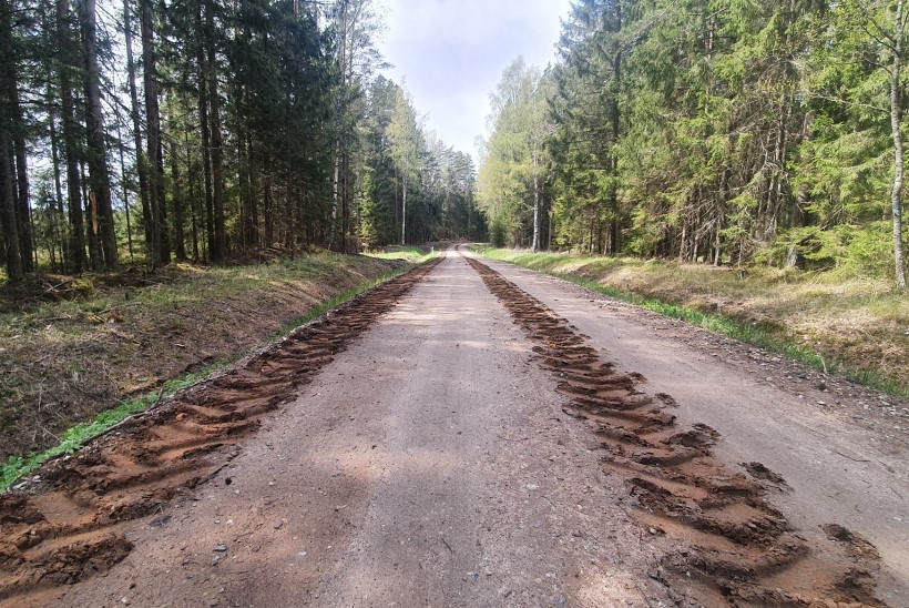 RIIK RIKUB RÄNGALT RAIERAHU: kus langevad laastud, kus tehakse mets päris lagedaks