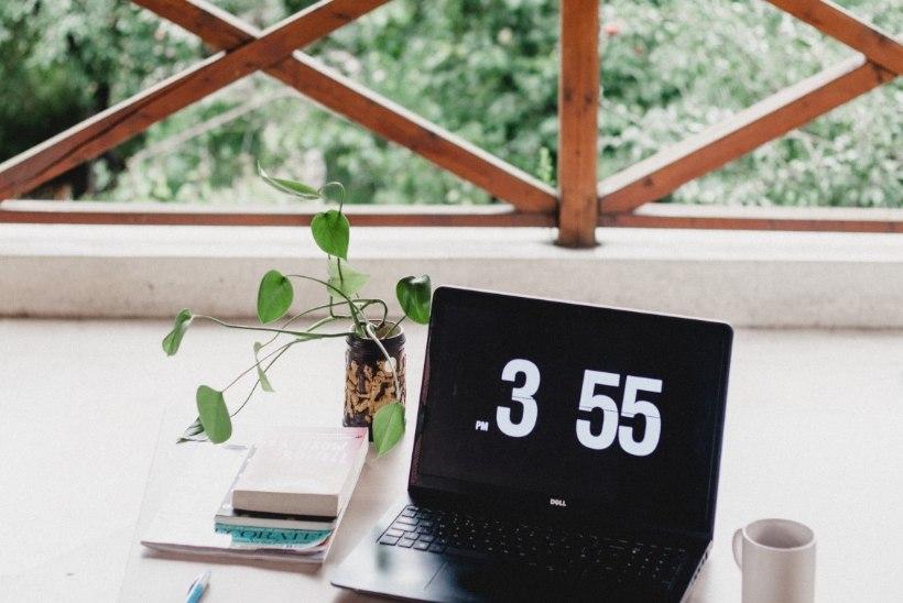 Tööta ja puhka samal ajal: häid nippe, kuidas töö suvekoju või loodusesse kaasa võtta