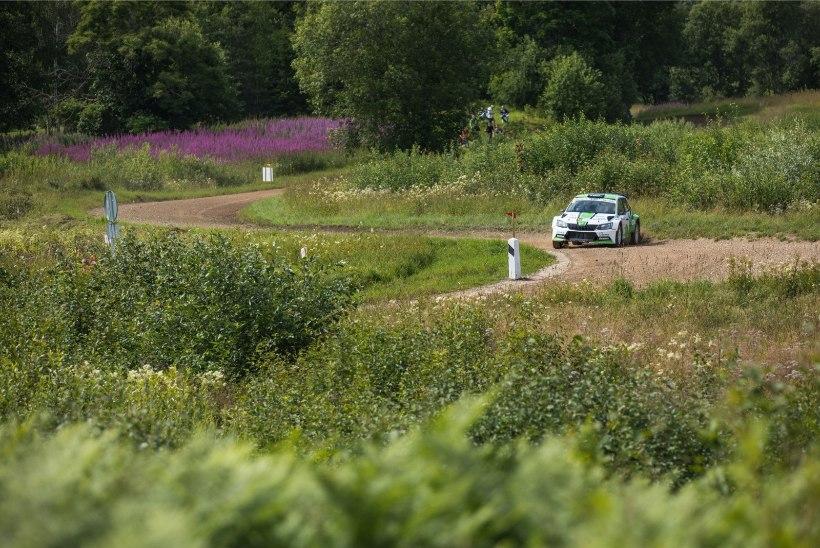Kuidas valiti teid MM-etapi kiiruskatseteks? Rally Estonia teemeister selgitab