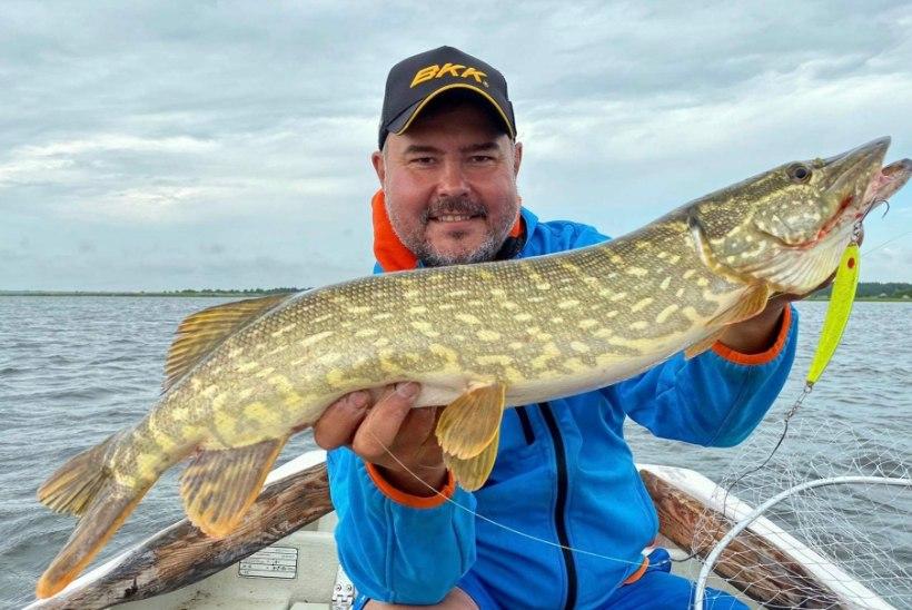Taavo Kuusiku edendab Saares jätkusuutlikku kalapüüki