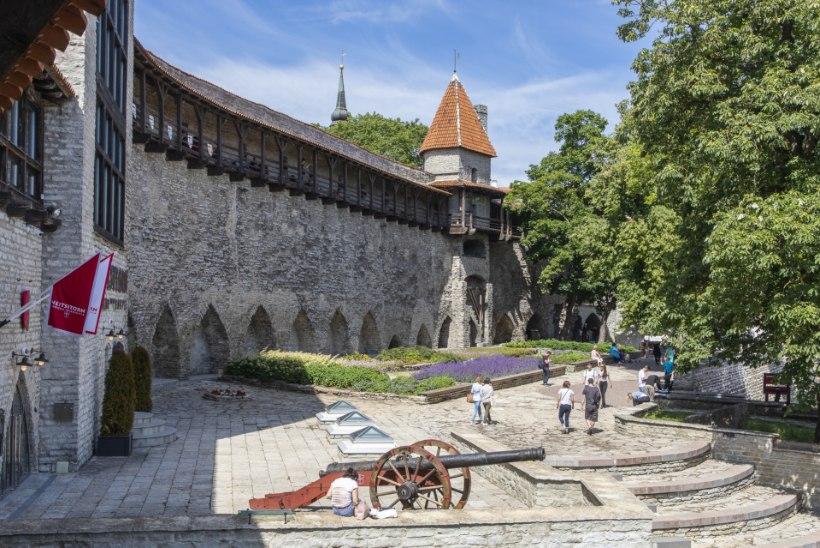 Kummituslugu: pea igas Tallinna tornis võib kohata kummitust