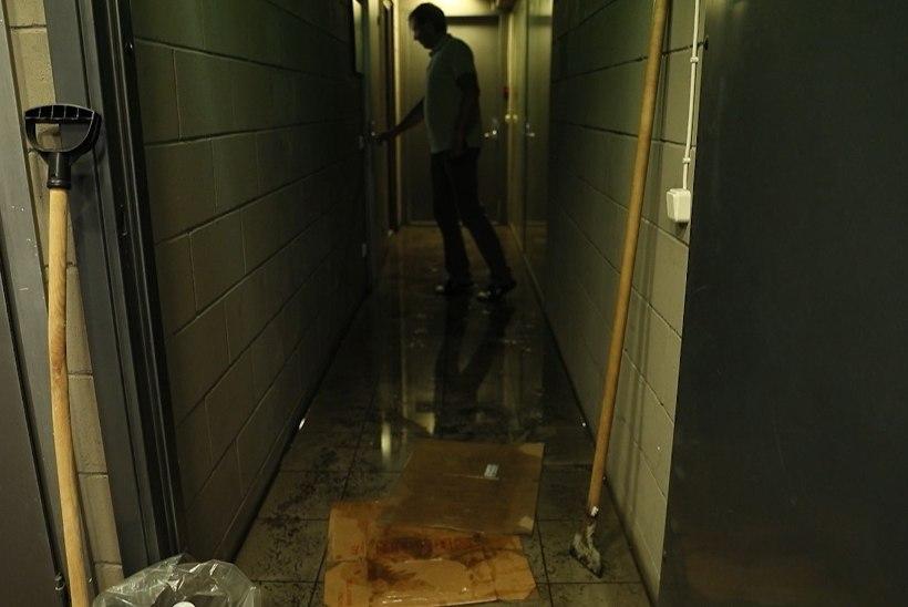 ÕL VIDEO | Äge vihm pani isegi WC-potist vee purskama! Miks linn midagi ette ei võta?