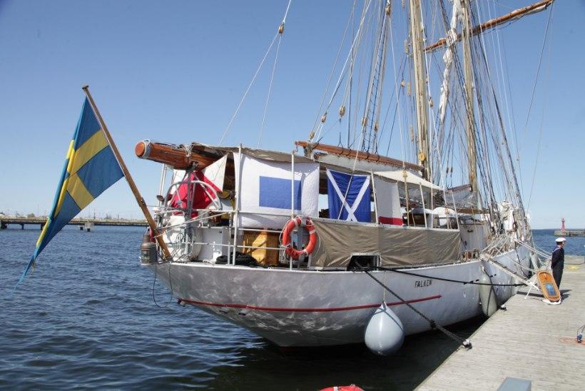 VIIRUSE KÕRVALNÄHUD: Rootsi eralaevu kohtab Eestis sel suvel üliharva
