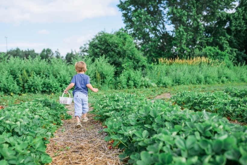 ÕPETA LÄBI MÄNGU! Need neli tegevust aitavad lastel jätkusuutlikku elustiili tundma õppida