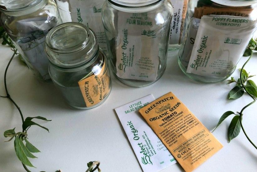 SELLE KUU MÄRKSÕNAD | Tähesadu, raamatuvahetus ja seemneraamatukogu