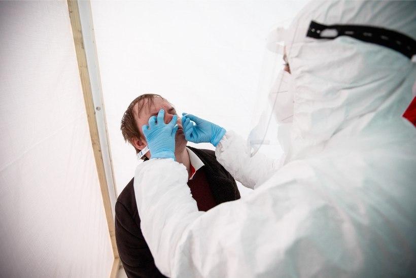 Terviseamet: ööpäevaga lisandus viis positiivset testitulemust, isolatsioonikorraldusele vilistanud nakatunu käis Narvas ringi