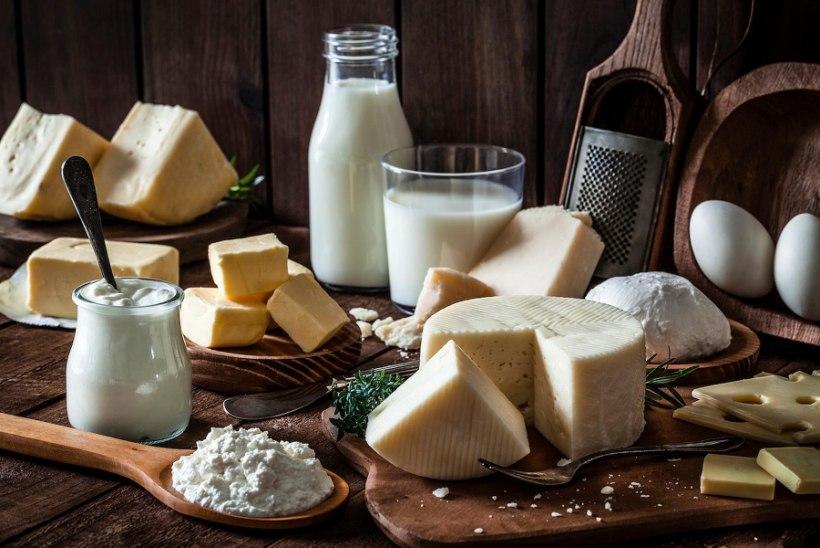 Kas salenemiseks tuleks rasvastest piimatoodetest loobuda?